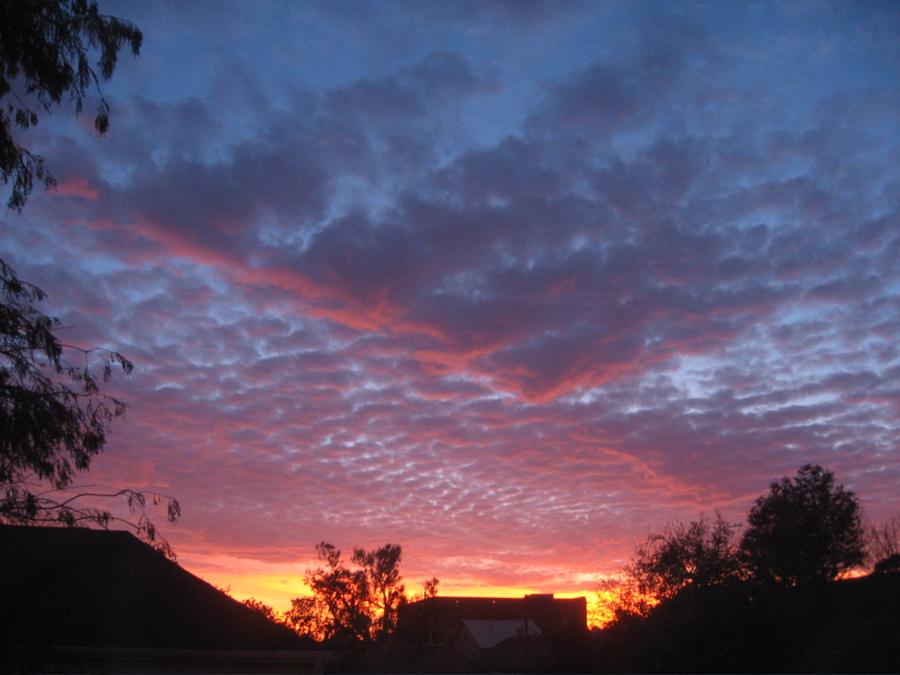 img_1290_sunsetfire